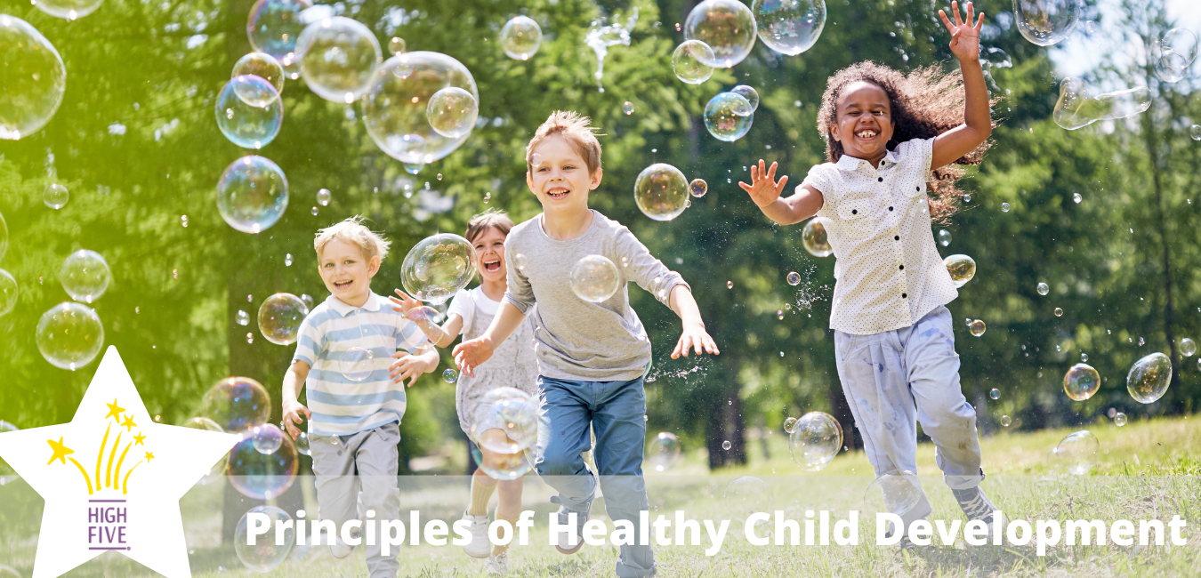 Principles of Healthy Child Development